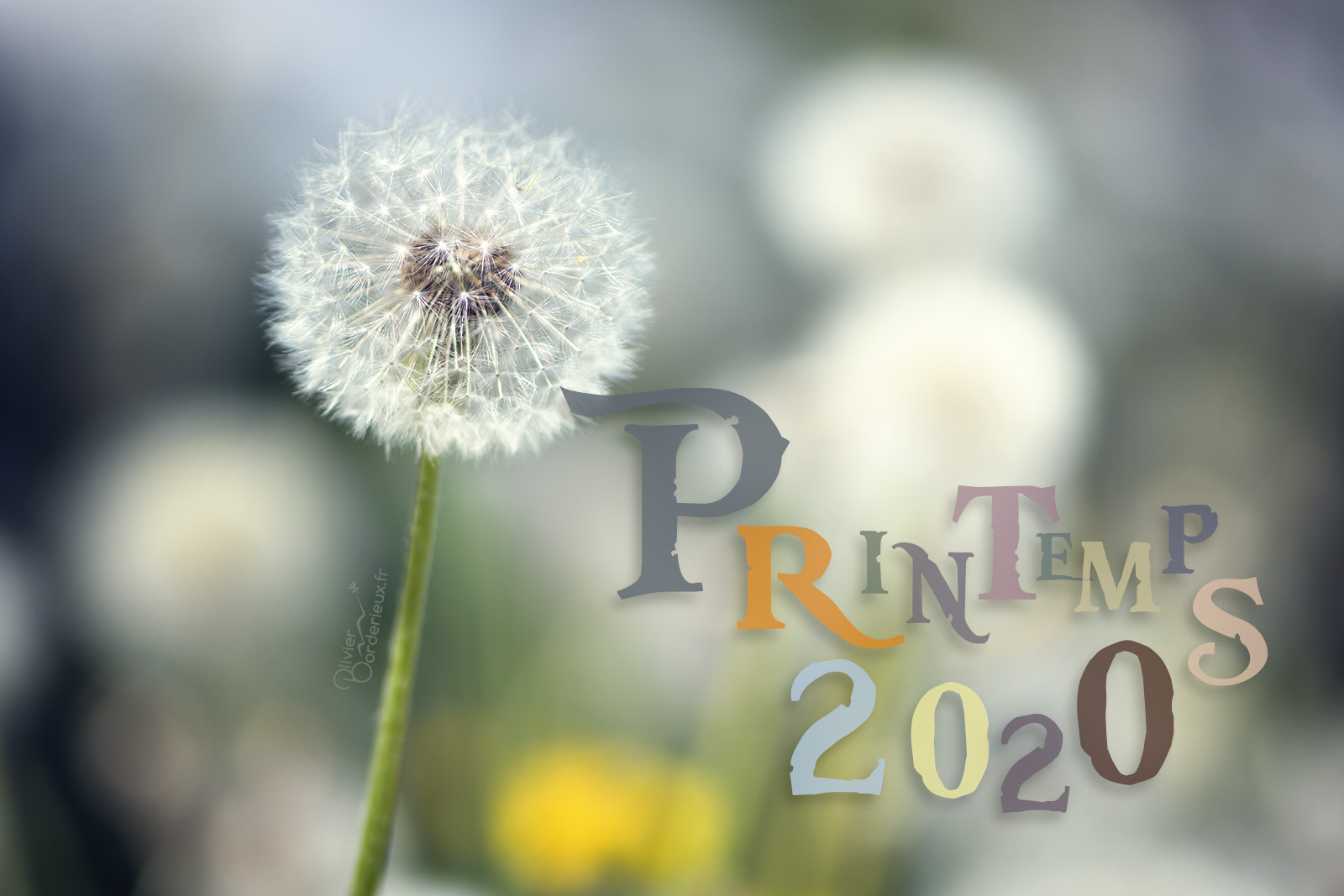 Printemps 2020